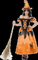 Black & Orange Storybook Witch Costume