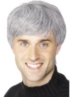 Corporate grey Wig