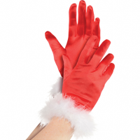 Santa Gloves, Red With White Trim