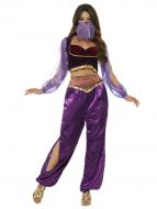 Arabian Princess Purple - Adult Costume